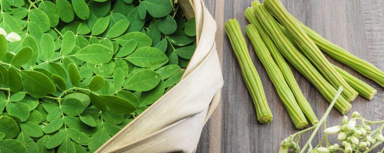 I benefici della Moringa Oleifera